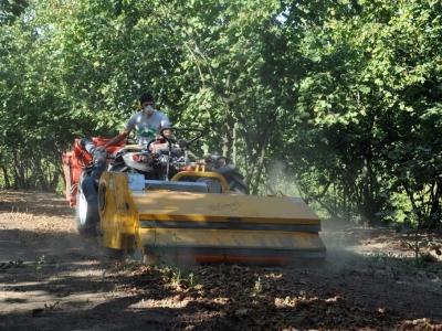 raccolta nocciole con macchina cravanzana produttori alta langa hazelnuts harvesting with machine producers